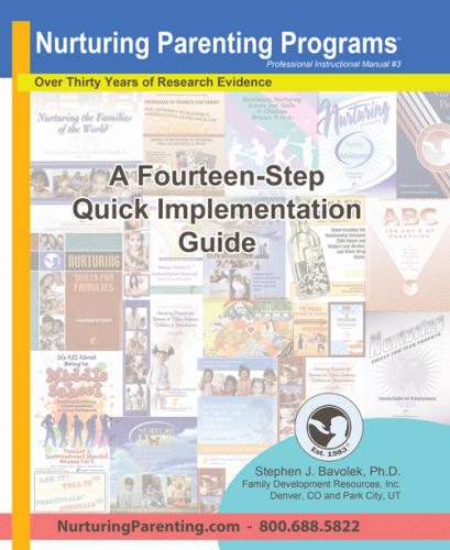 A Fourteen-Step Quick Implementation Guide (PIM#3)